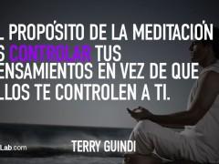 El propósito de la meditación…